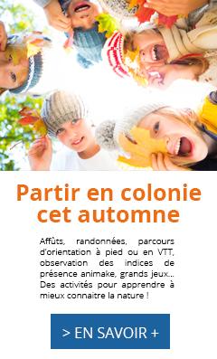 Colonie automne 2017, Les Caillettes