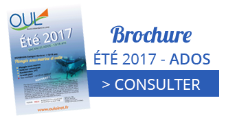 Colonie de vacances, été 2017, ados, consulter, oul, Oeuvre Universitaire du Loiret