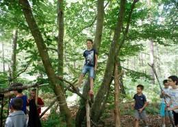 Colonie de vacances, séjours vacances, enfants, jeux dans la forêt, automne 2017
