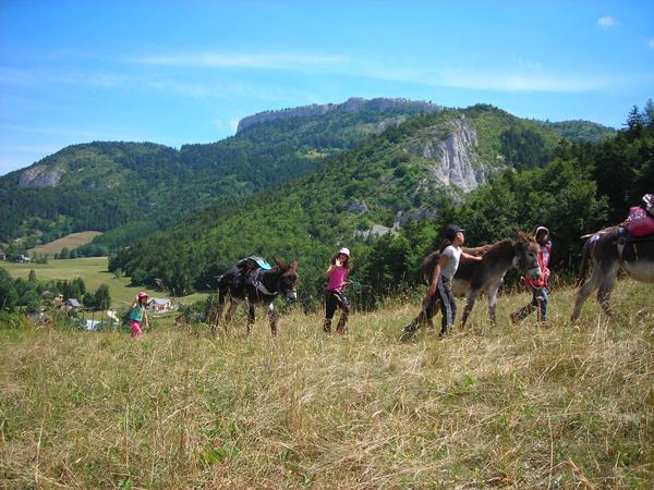Colonie de vacances, séjours vacances, Lans en Vercors, enfants, rando avec les ânes : été