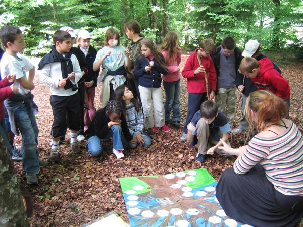 Classe de découvertes, centre vacances, classe de campagne,la forêt