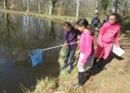 Classe de découvertes, centre vacances, classe de campagne, les milieux humides