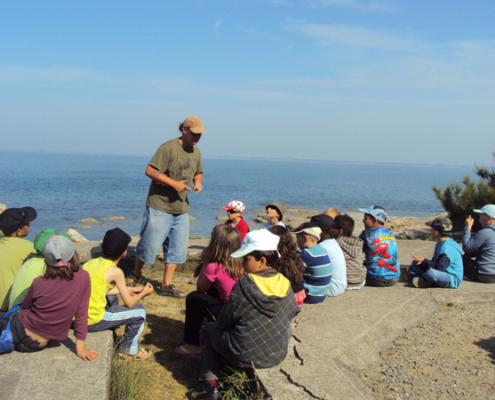 Classe de découvertes, centre vacances, classe de mer, Pénestin : lecture du paysage