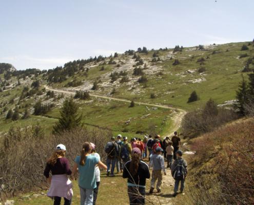 Classe de découvertes, centre vacances, classe de montagne, Lans en Vercors : randonnée