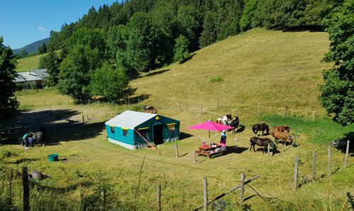 Colonie de vacances, séjours classes de découvertes, famille, Lans en Vercors, équitation