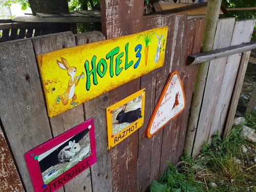 Colonie de vacances, séjours classes de découvertes, famille, Lans en Vercors, les animaux