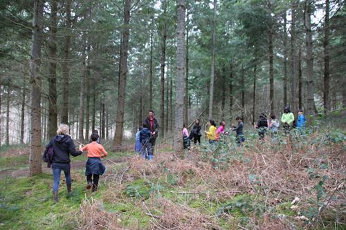 Classe de découvertes, centre vacances, classe de campagne, la forêt 1