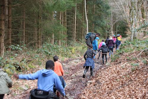 Classe de découvertes, centre vacances, classe de campagne, la forêt 2