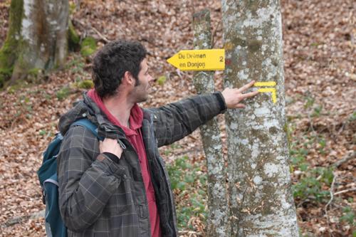 Classe de découvertes, centre vacances, classe de campagne, la forêt 3