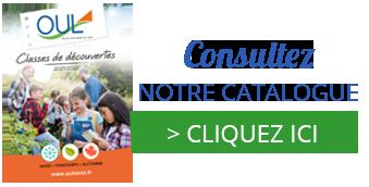 Classe de découvertes, hiver, printemps, automne 2022 : Oeuvre Universitaire du Loiret